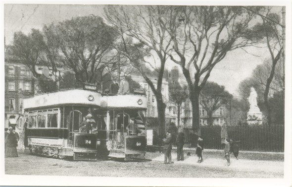Photo:233 - Trams in Victoria Gardens, 1905