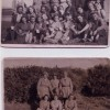 Page link: WOMENS LAND ARMY PEACEHAVEN