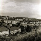 Photo: Illustrative image for the '6. Whitehawk' page